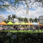 COP17 Media Tents | Youth Climate Report